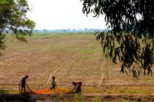 Cambodian-countryside-Phnom-Penh_Traveloguer Travel Blog
